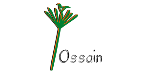 Ossain_paimigueldeogun